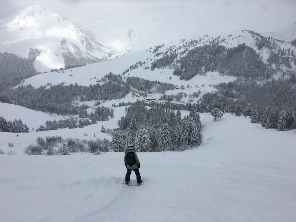 Powder day on Mont Chery. Mouflon, Les Gets