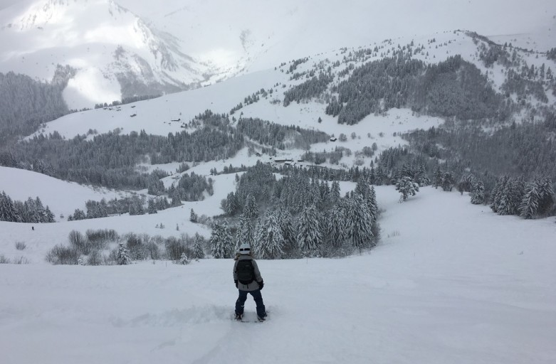 Fresh powder on Mouflon, Les Gets