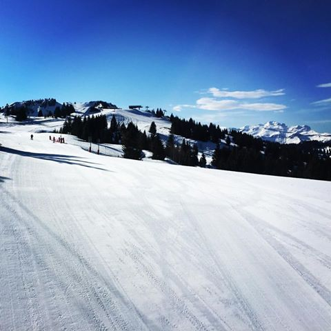 blue skies, great snow and empty slopes in Les Gets