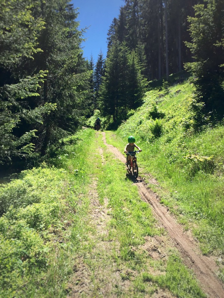 Fire road on 'La piste des Biquettes' downhill mountain biking with the kids.