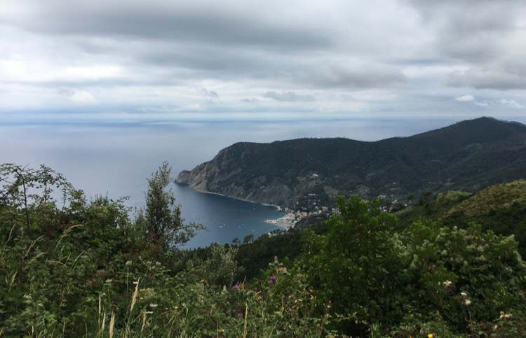 Cinque de Terre national park. Mountainous, rocky coastline covered in vegetation!