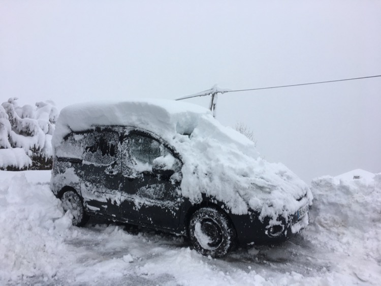We woke on Monday morning to a decent dump of snow!