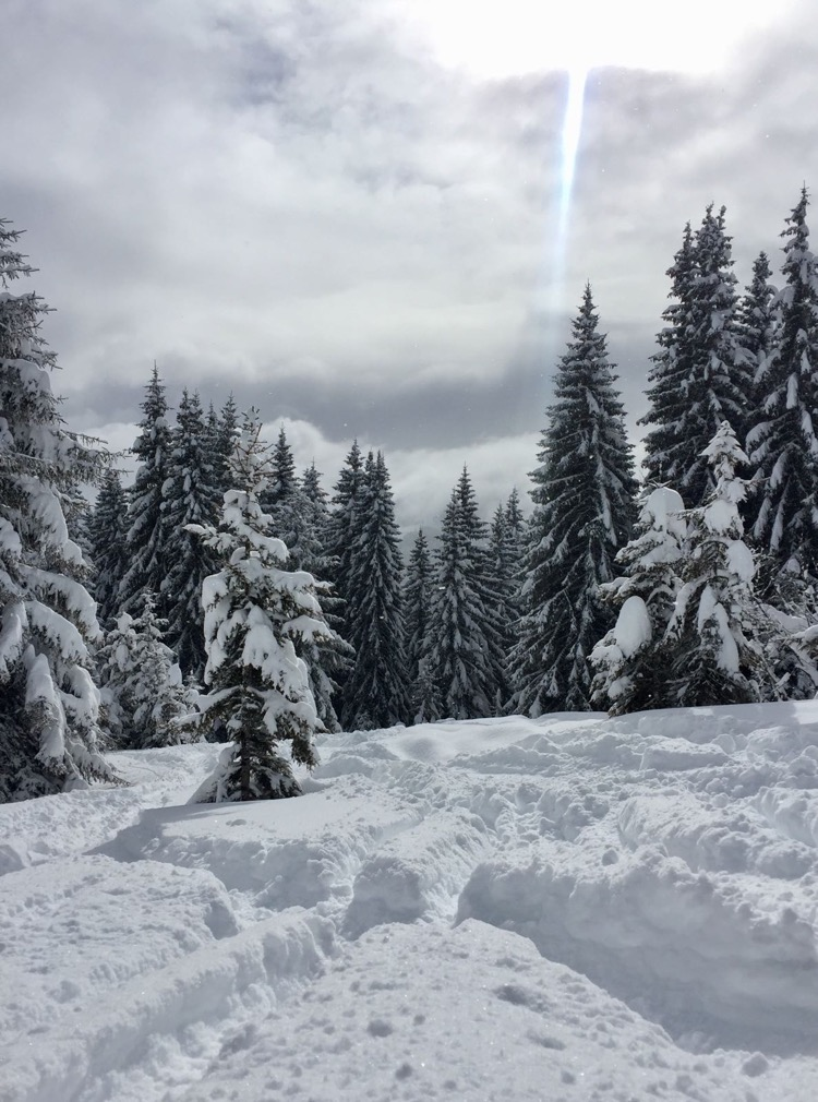 Deep fresh snow on what could be the best day of the season so far!