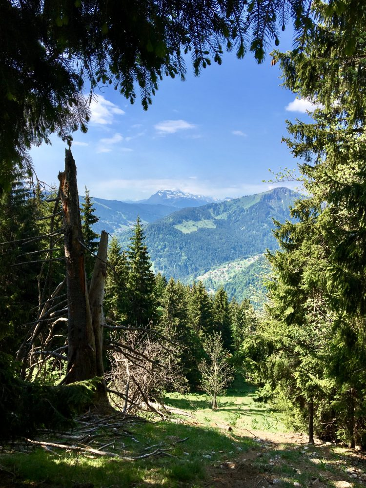 The hike to Nantaux - with views back to La Côte d'Arbroz and Mont Chery.