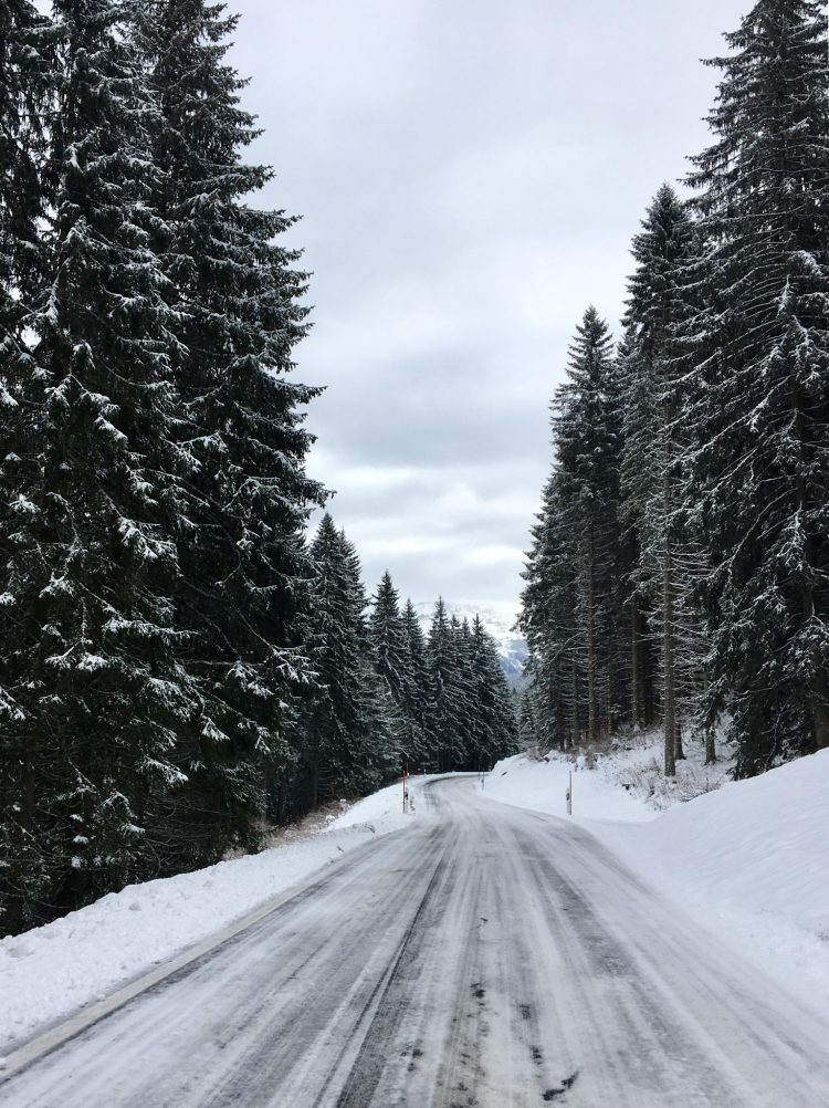 Snow covered trees and road on the way into Champéry. Bliss!