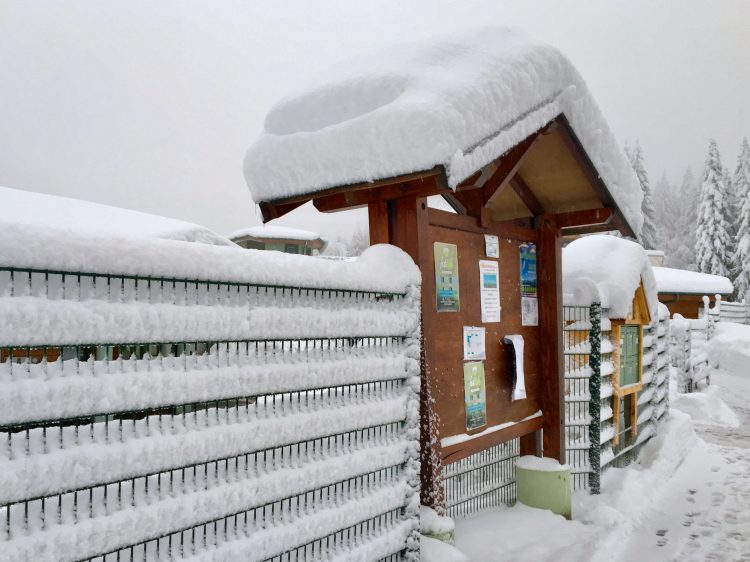 Low temperatures and lots of snow in the Portes Du Soleil, December 2017.