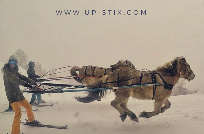 Ski-jöering Up-Stix