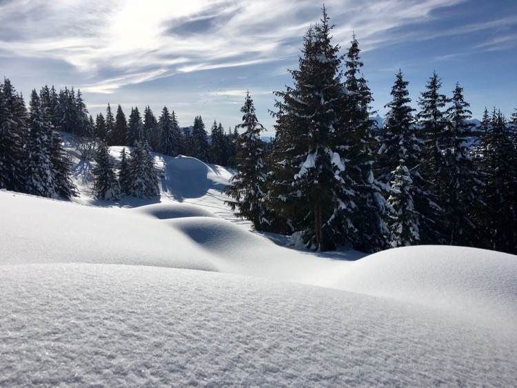 Pillows of pow in Les Gets